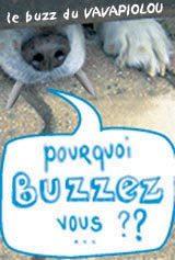 Enquete_buzz